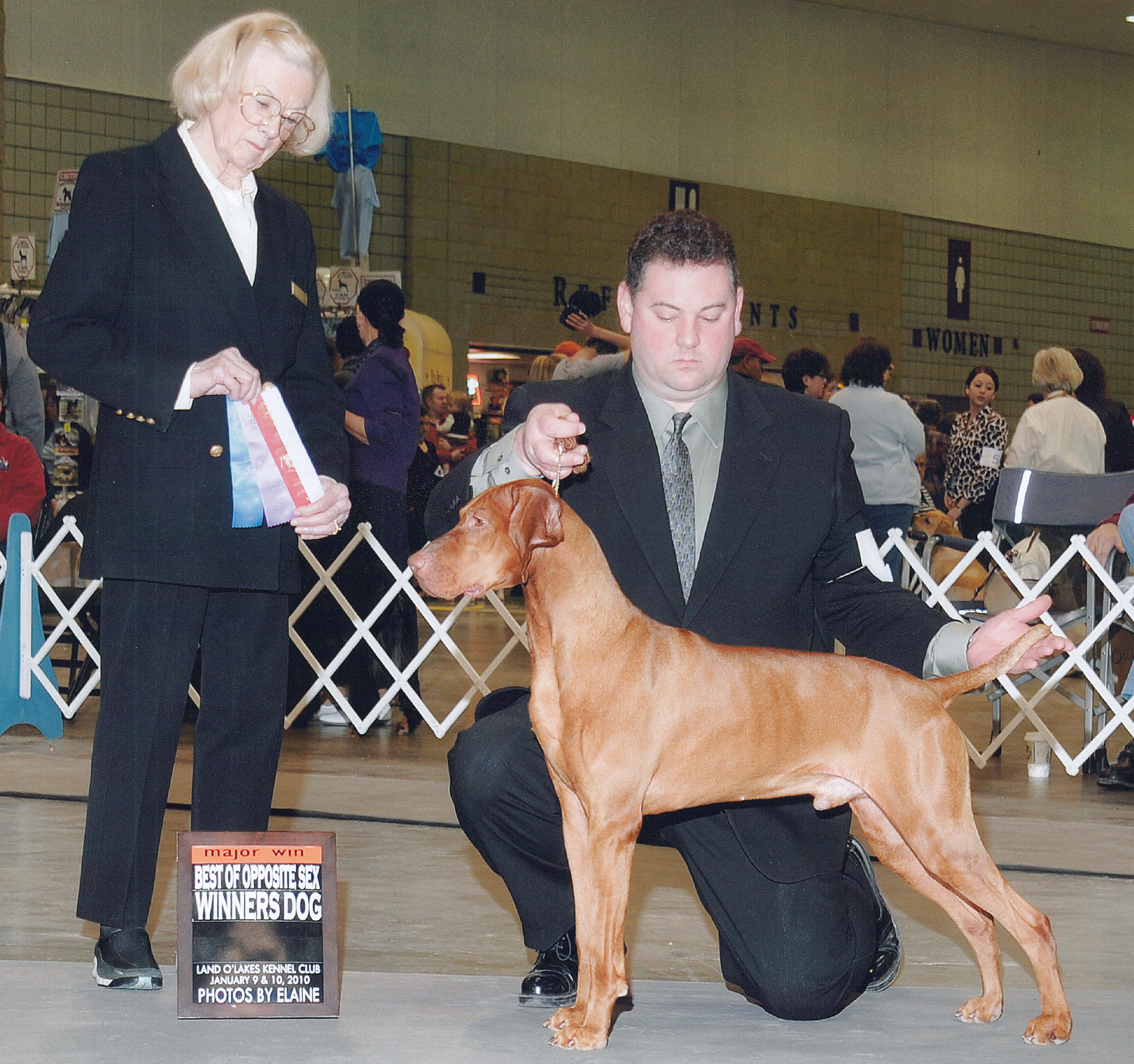 Amateur Dog Show